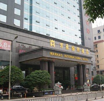 湖南万豪酒店锅炉-生物质采暖锅炉