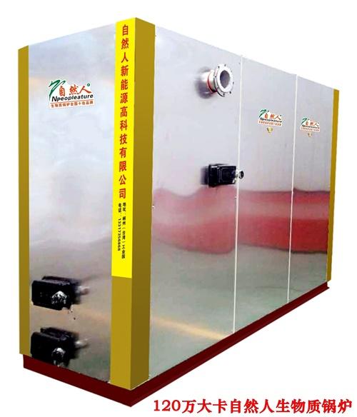 120万大卡生物质锅炉 2吨生物质锅炉